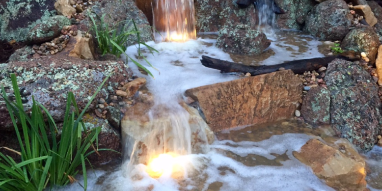 Pond foam the 4 most common causes and what to do about it for Foam on fish pond