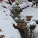 Getting Your Pond Ready for winter