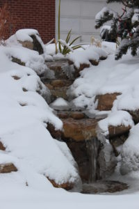 landscape company to build your pond