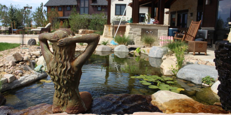 water feature and pond lifestyle