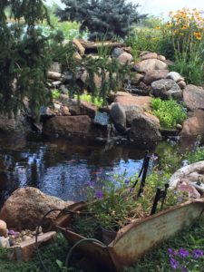 Natural pond - landscape company to build your pond