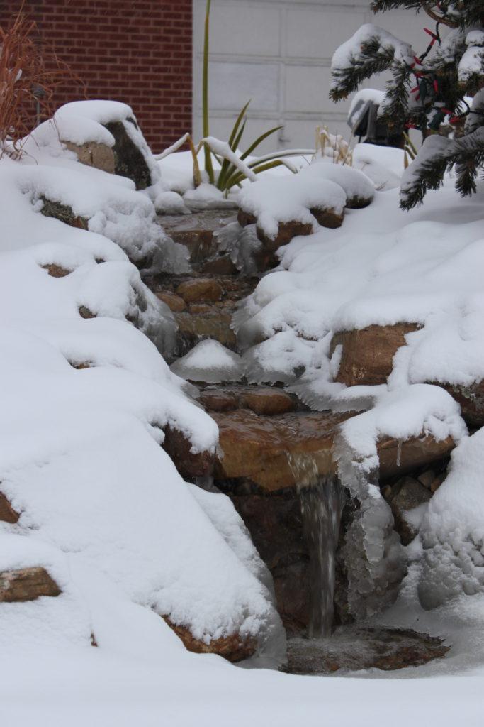 winterizing koi pond