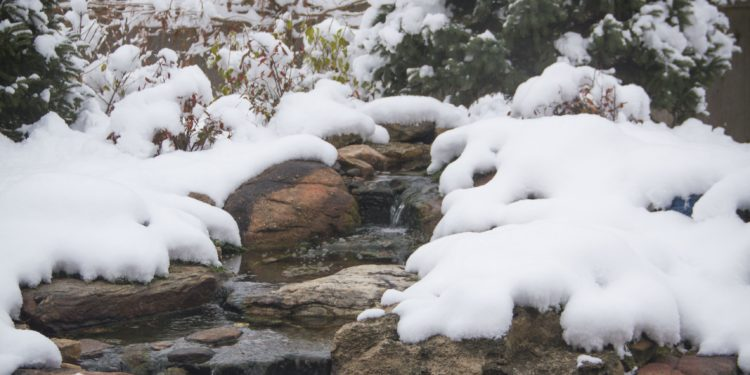 winter pond koi pond backyard water feature