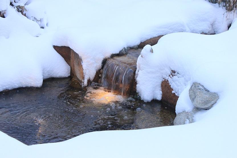 winter pond care