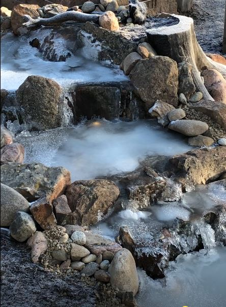 Why add water to the winter pond?