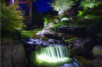 Pond Lighting backyard water feature